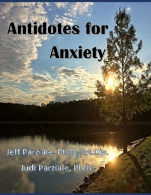 book cover image of Antidotes for Anxiety